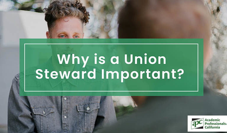 Why is a Union Steward Important